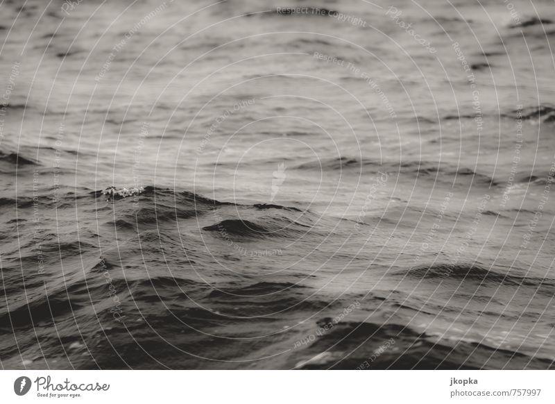 Unruhe Abenteuer Meer Wellen Wassersport Schwimmen & Baden Segeln tauchen Natur schlechtes Wetter Unwetter Wind Sturm dunkel wild Fernweh Angst Bewegung kalt