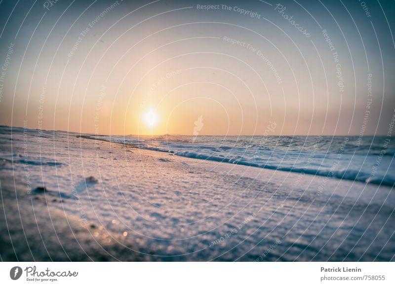 Winter in Dänemark Himmel Natur Ferien & Urlaub & Reisen Wasser Sonne Meer Erholung Landschaft ruhig Ferne Strand Umwelt Küste Freiheit Zufriedenheit