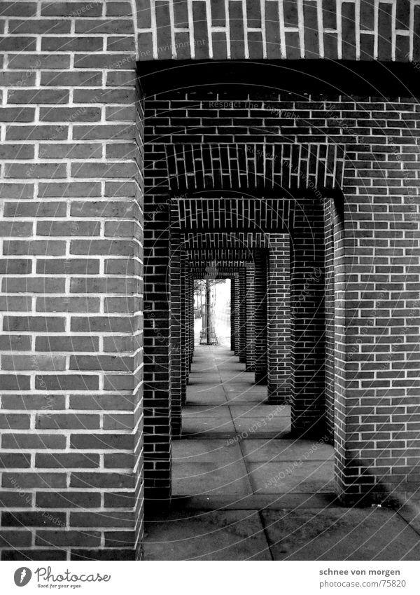 immer geradeaus Backstein Licht schwarz grau Mauer Baum Beton horizontal vertikal Fuge dunkel hell Herbst Oktober September modern Schwarzweißfoto Linie october