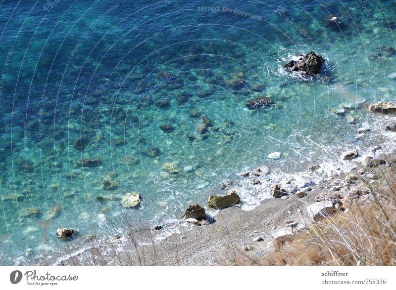 neue Ufer Umwelt Natur Landschaft Schönes Wetter Wellen Küste Strand Bucht Meer blau türkis Stein Felsen Felsküste Gesteinsformationen Gras Vogelperspektive