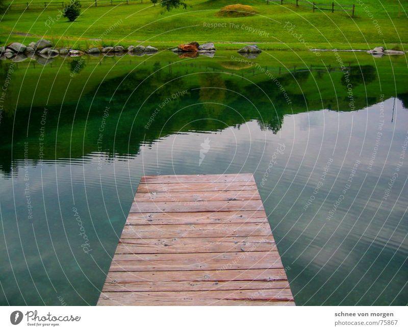 spring rein! Natur Wasser Himmel Baum grün Sommer ruhig kalt Wiese Gras Berge u. Gebirge Holz Stein See Park Linie