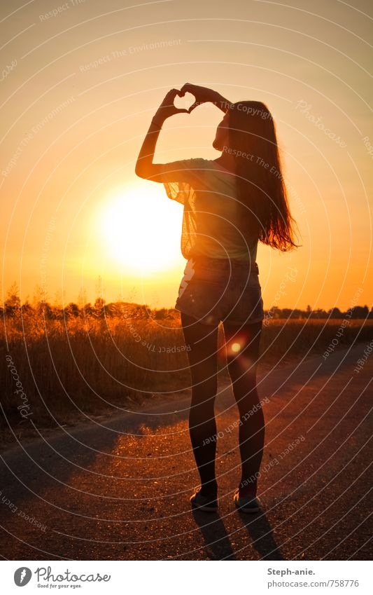 Herz feminin Junge Frau Jugendliche Erwachsene 1 Mensch Himmel Wolkenloser Himmel Sonne Sonnenaufgang Sonnenuntergang Sommer Schönes Wetter Feld langhaarig