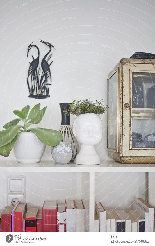 detailverliebt Häusliches Leben Wohnung Innenarchitektur Dekoration & Verzierung Möbel Pflanze Grünpflanze Topfpflanze Sammlerstück Vase Buch Bücherregal