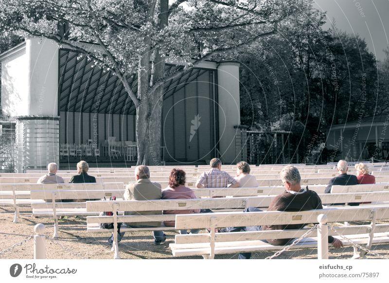 Konzert der Stille Mensch ruhig Erholung Herbst Senior Stimmung Zusammensein Freizeit & Hobby Romantik Bank hören Theaterschauspiel genießen Partner