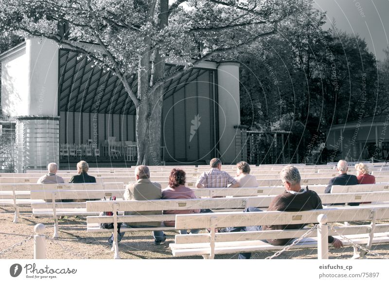 Konzert der Stille Mensch ruhig Erholung Herbst Senior Stimmung Zusammensein Freizeit & Hobby Romantik Bank hören Konzert Theaterschauspiel genießen Theater Partner