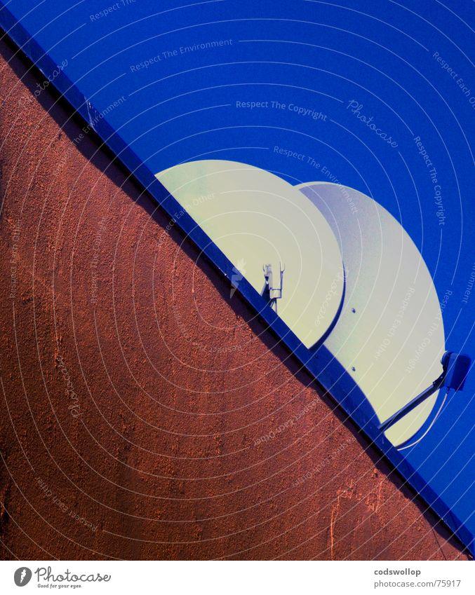 digital pärchen 2 eng Himmel diagonal Wand Dach weiß E-Mail Kommunizieren Fernsehen satalite dish Schalen & Schüsseln receiver emfangen two close sky blue blau
