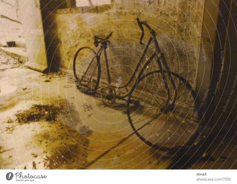 Drahtesel Fahrrad