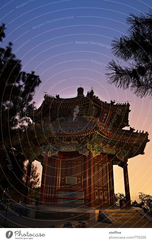 schmachtig Peking China historisch Tempel Sonnenuntergang Kitsch Farbfoto Textfreiraum oben