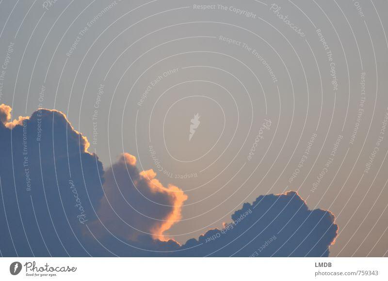 Wolke 7 Luft Himmel Wolken Sonnenaufgang Sonnenuntergang Sonnenlicht blau gold Abenddämmerung Wolkenhimmel Himmel (Jenseits) himmlisch Zufriedenheit