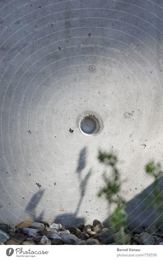 Ortsichtbeton ruhig Sonne Pflanze Wärme Stadt Mauer Wand grau grün Kies Loch rund Farbfoto Außenaufnahme Strukturen & Formen Menschenleer Textfreiraum oben Tag
