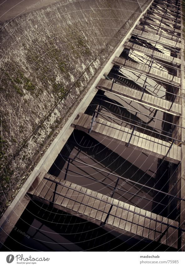 WEGE ZUR LUST | bordell prostituierte sex liebe lust brücken Wasser frei Brücke Fluss Dach Übergang Utrecht