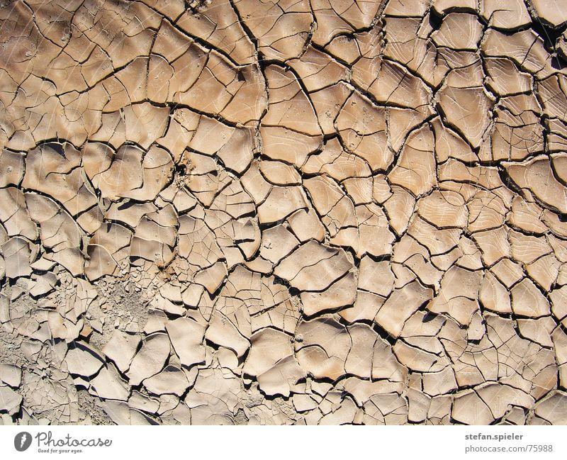 trocken braun Erde Bodenbelag Wüste heiß Fliesen u. Kacheln Riss Verlauf
