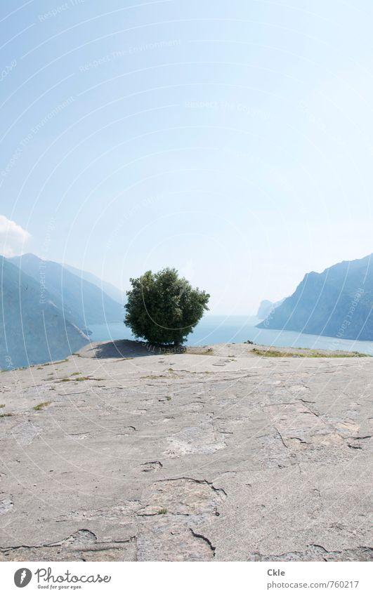 Lago di Garda Ferne Sommer Sonne Berge u. Gebirge Natur Landschaft Pflanze Himmel Sonnenlicht Schönes Wetter Baum Monte Brione Gipfel Küste Seeufer Gardasee