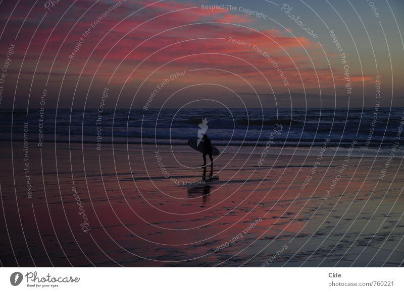 Goin' Home sportlich Fitness Ferien & Urlaub & Reisen Freiheit Mann Erwachsene Körper 1 Mensch Natur Landschaft Himmel Wolken Horizont Sonnenaufgang