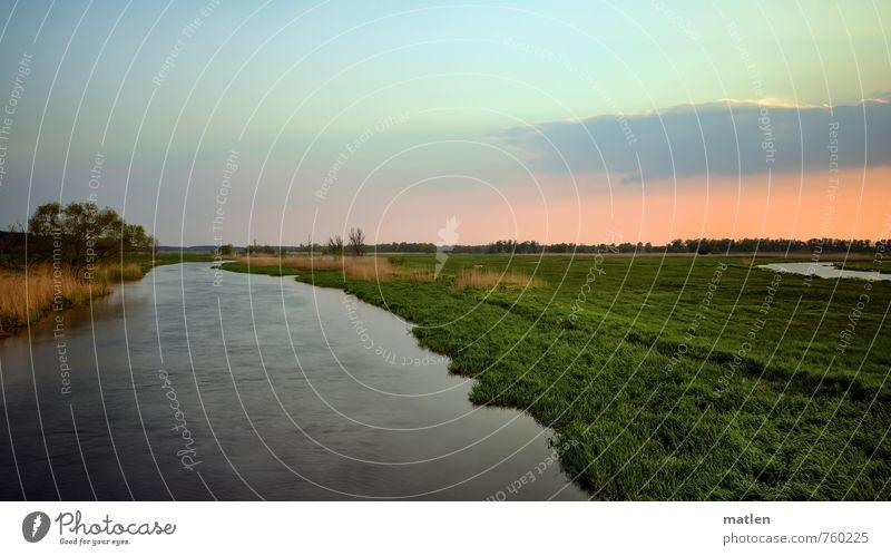 Havelland Natur Landschaft Pflanze Wasser Himmel Wolken Horizont Sonnenaufgang Sonnenuntergang Frühling Klima Wetter Schönes Wetter Baum Gras Wiese Flussufer