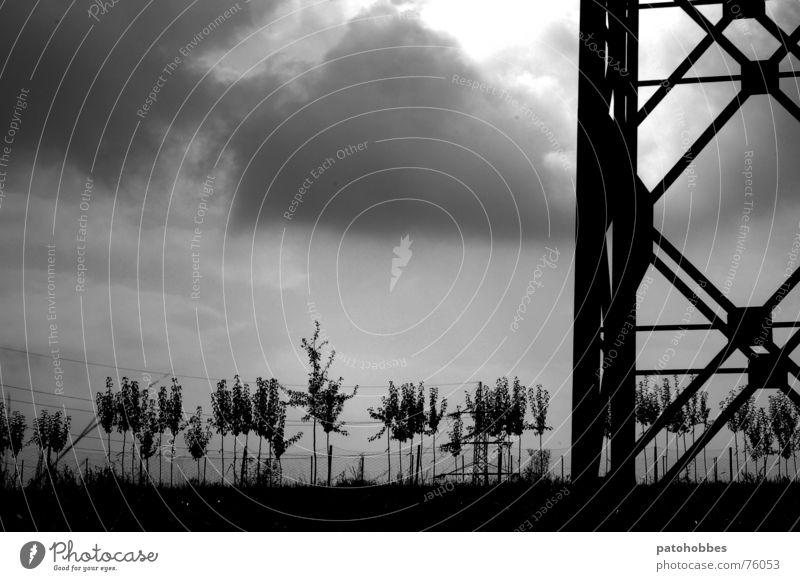 Herbst 06.2 Natur Himmel Baum Wolken dunkel Wiese grau Landschaft klein Wetter groß Elektrizität Wachstum Industriefotografie Ast Strommast