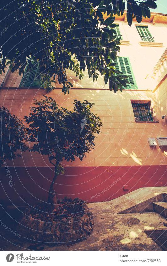 Geheimnisvoll | Hinterhofzauber Ferien & Urlaub & Reisen Sommer Baum ruhig Haus Fenster Wärme Wand Reisefotografie Mauer Fassade Häusliches Leben Idylle Spanien