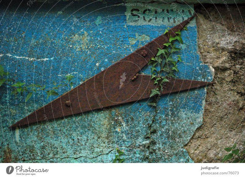 Schwimmer verwittert Schablonenschrift Efeu grün türkis schwarz Herbst Verfall abblättern Grünspan Am Rand Putz Pflanze Schwimmbad Typographie bewachsen