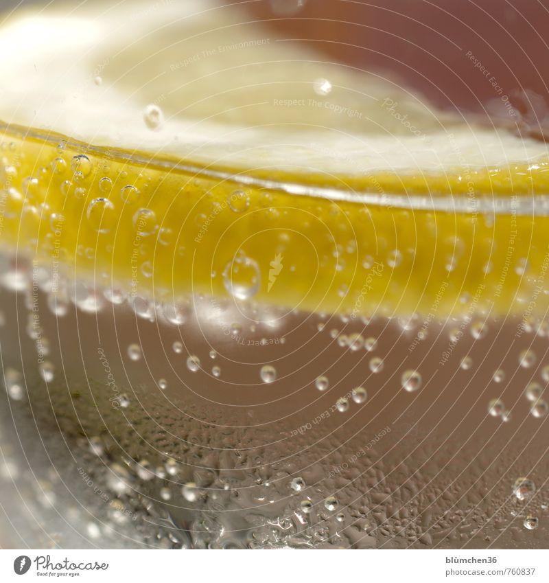 Verlockung | durstig? Getränk trinken Erfrischungsgetränk Trinkwasser Kohlensäure Zitronenscheibe einfach Flüssigkeit Gesundheit kalt natürlich gelb Wasser