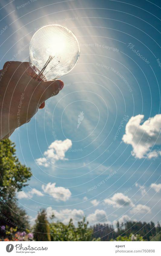 Erneuerbare Energie Technik & Technologie Energiewirtschaft Sonnenenergie Natur Landschaft Himmel Sonnenlicht Garten Glühbirne entdecken leuchten Fortschritt