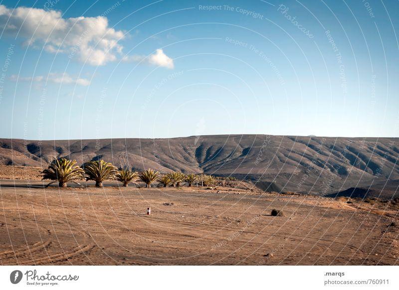 Allee Abenteuer Ferne Natur Landschaft Himmel Horizont Sommer Schönes Wetter Palme Hügel exotisch trocken Stimmung Dürre Farbfoto Außenaufnahme Menschenleer