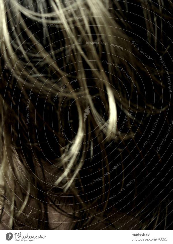 HIDDN | haare hair haar frisur hairdress blond trash Mensch Mann Gesicht Leben Haare & Frisuren Behaarung blond Typ Herr