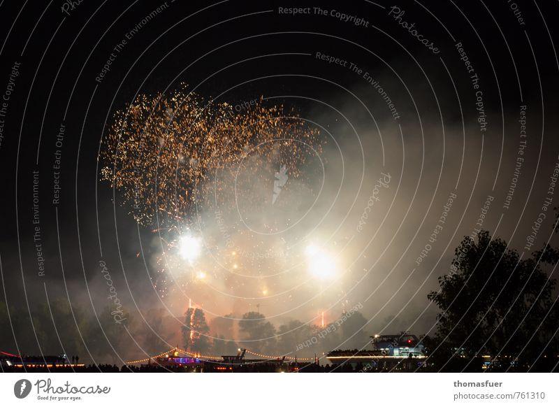 Feuerwerk Baum Freude Feste & Feiern Wasserfahrzeug Mode Lifestyle Zufriedenheit Lebensfreude Vergänglichkeit Show Veranstaltung Silvester u. Neujahr Hauptstadt