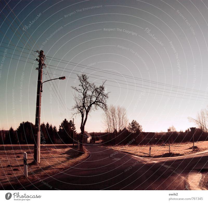 Zwischen den Dörfern Energiewirtschaft Strommast Kabel Wolkenloser Himmel Horizont Schönes Wetter Baum Verkehr Straße Kurve dunkel Farbfoto Gedeckte Farben