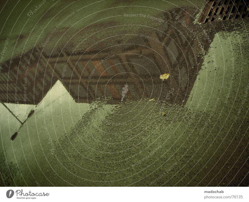 EXUSU | pfütze reflektion unwirklich herbst autumn fall laub Himmel Stadt blau Wasser Blatt Wolken Haus dunkel Fenster Straße Leben Architektur Traurigkeit