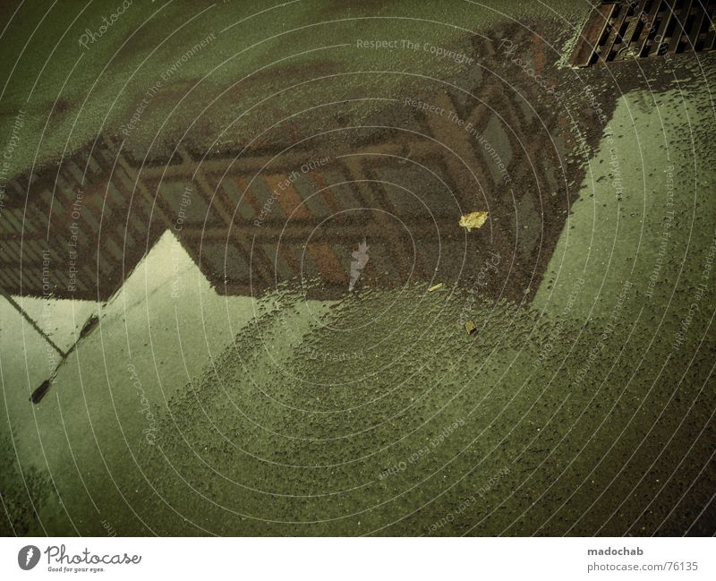 EXUSU | pfütze reflektion unwirklich herbst autumn fall laub Pfütze Nebel nass Haus Hochhaus Gebäude Material Fenster live Block Beton Etage trist dunkel