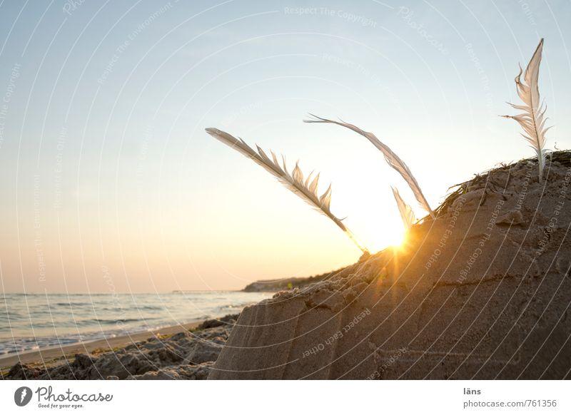 am ende eines Tages Himmel Natur Ferien & Urlaub & Reisen Wasser Sommer Sonne Landschaft Strand Umwelt Spielen Freiheit Sand Horizont Freizeit & Hobby leuchten