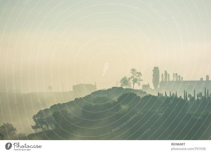 Toskana am Morgen Natur Landschaft Frühling Schönes Wetter Nebel Garten Wiese Feld Dorf Stimmung Glück Zufriedenheit Fernweh Ferne Außenaufnahme Menschenleer