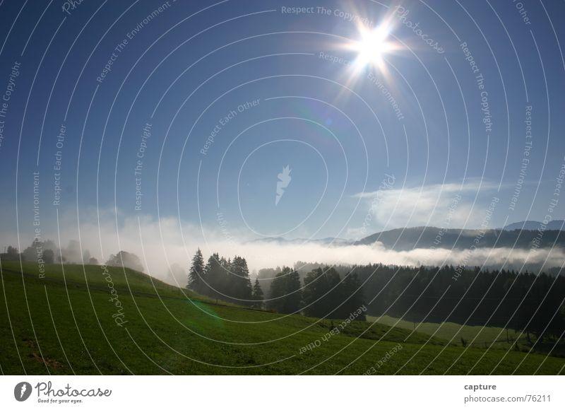 Deutsche Alpenstasse Sonne Ferien & Urlaub & Reisen Erholung Freiheit Landschaft Luft Beleuchtung Nebel grell staunen Allgäu Bayern
