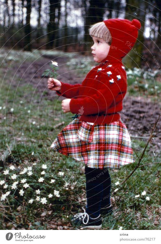 Ein Männlein (oder Weiblein?) steht im Walde... Kind Blume rot klein Mütze Profil kariert