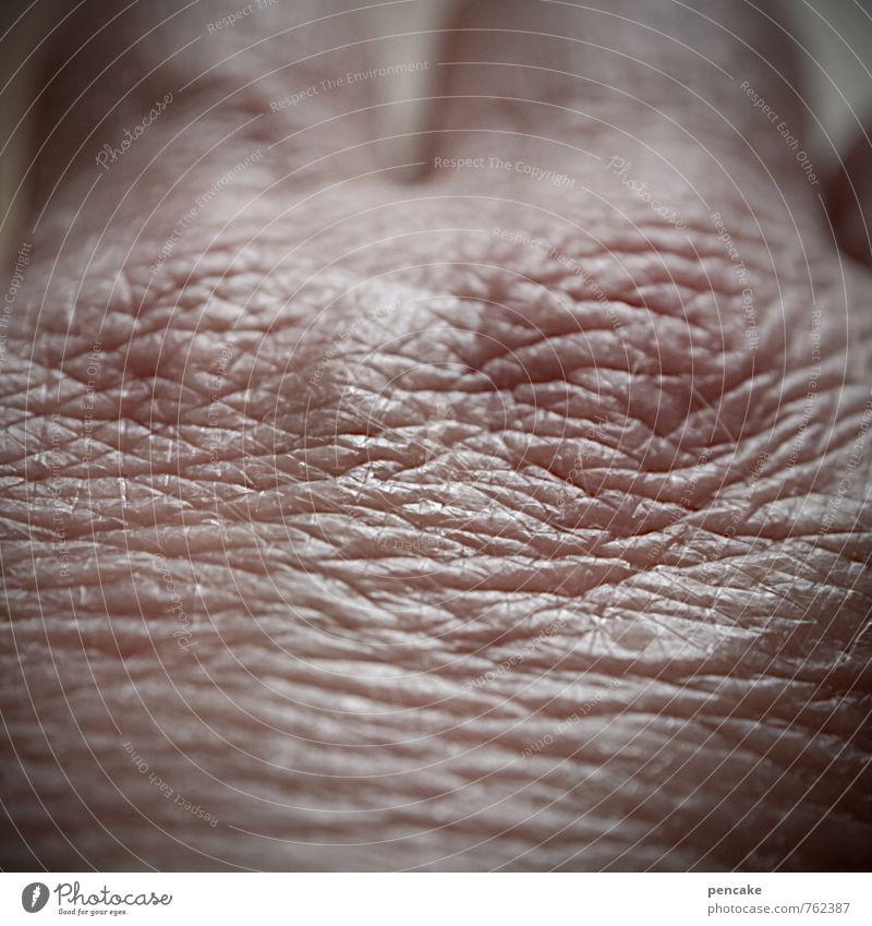hautsache alt Hand Erwachsene Leben Senior feminin Gesundheit Gesundheitswesen Haut 60 und älter authentisch Finger Schutz Zeichen trocken Hautfalten