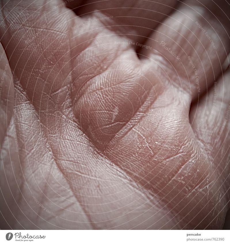 Mille Grazie | 500 Mensch feminin Erwachsene Senior Leben Haut Hand 1 Zeichen alt authentisch Wärme Optimismus Vertrauen Menschlichkeit dankbar beweglich