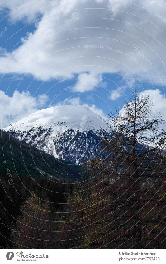 Abkühlung Himmel Natur Ferien & Urlaub & Reisen blau Pflanze weiß Baum Landschaft Wolken Wald kalt Umwelt Berge u. Gebirge Frühling natürlich Schneefall