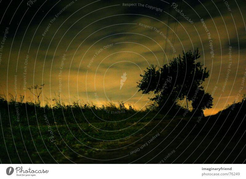 the sun woke the whole state Sonnenaufgang Wolken Nacht Dämmerung Morgen Baum Wiese Gras Länder Hochspannungsleitung Langzeitbelichtung Himmelskörper & Weltall
