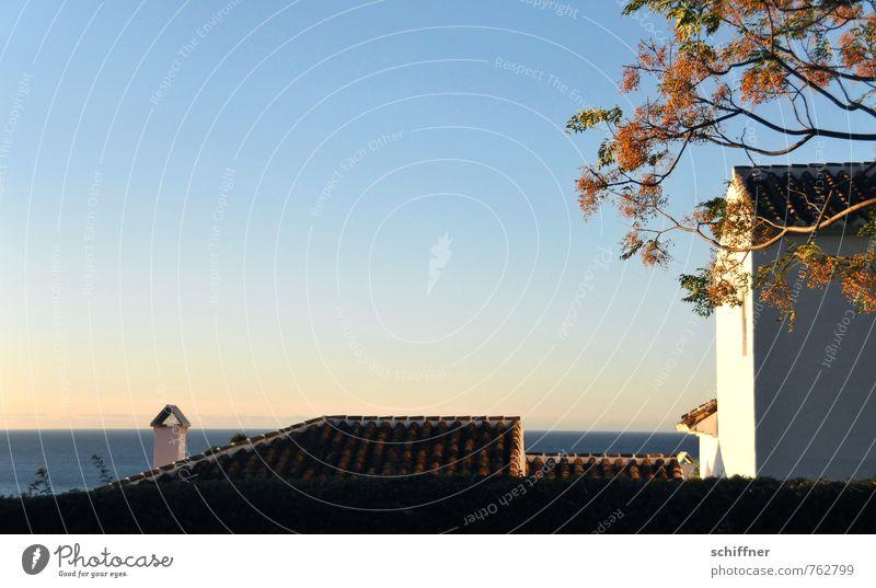 bodenständig | mit Meerblick Himmel Ferien & Urlaub & Reisen blau Pflanze Baum ruhig Landschaft Haus Ferne Wand Mauer Freiheit leer Schönes Wetter Aussicht