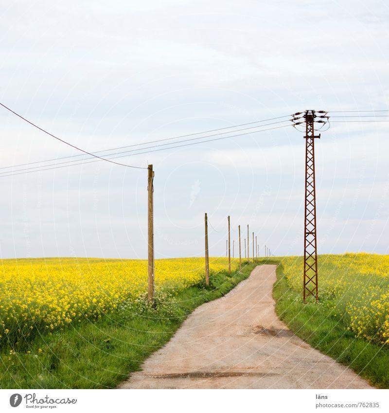 fahrt ins blaue Ausflug Energiewirtschaft Strommast Umwelt Natur Landschaft Erde Himmel Wolken Sommer Gras Rapsfeld Feld Straße Wege & Pfade gelb grün