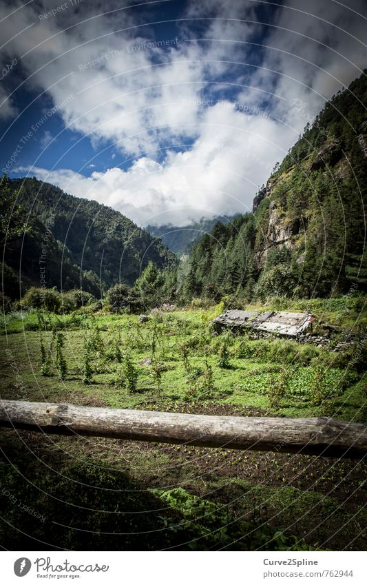 Greenmile Natur Landschaft Pflanze Tier Urelemente Erde Himmel Wolken Sommer Gras Wiese Feld Wald Ferne frei Hütte Haus grün Berge u. Gebirge Nepal Himalaya