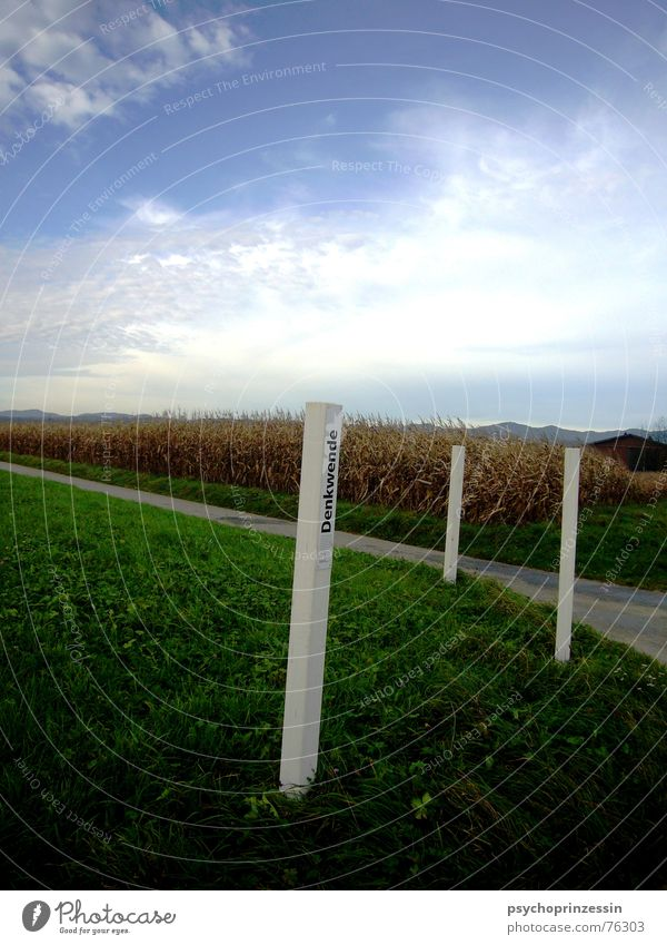 Wendepunkt Natur Himmel weiß Straße Herbst Wiese Wege & Pfade Denken Landschaft Feld Perspektive Bauernhof Amerika Wiedervereinigung Weizen