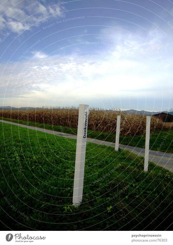 Wendepunkt weiß Denken Wiese Bauernhof Feld Weizen Herbst Amerika Landschaft Himmel Natur Wiedervereinigung Straße Wege & Pfade Perspektive