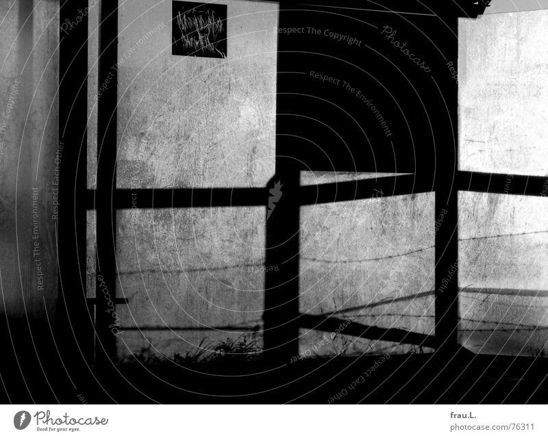 Bushaltestelle Degersen Landwirtschaft Forstwirtschaft Gras Wiese Dorf Verkehr Öffentlicher Personennahverkehr Schilder & Markierungen gruselig Einsamkeit Angst