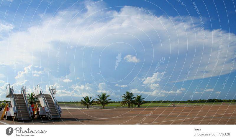 nach dem Gate schön Sonne Ferien & Urlaub & Reisen ruhig Wolken Wiese Wärme Linie Flugzeug Wetter Treppe Physik heiß Flughafen Palme Abschied
