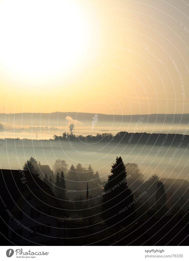 sweet morning glow Himmel Sonne Wolken Wald Berge u. Gebirge Nebel Schweiz Alpen Rauch Farbenspiel Jura