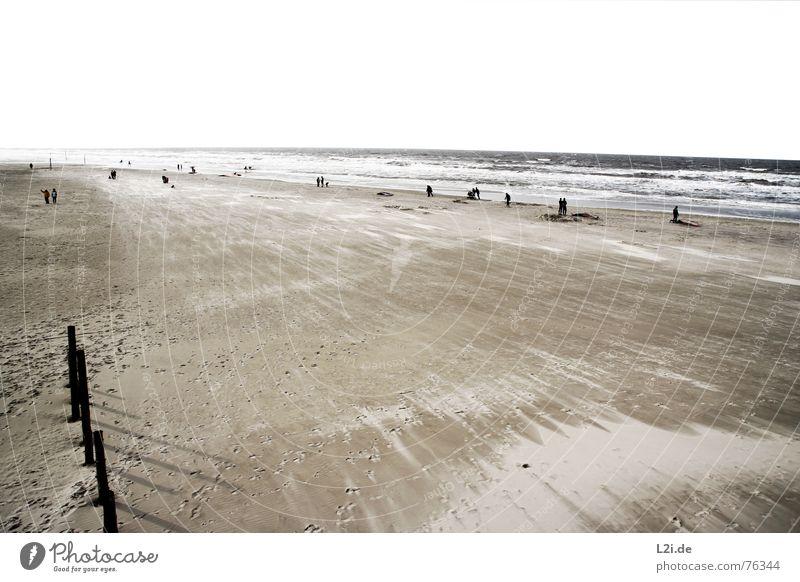 AT THE SEA Strand Meer See St. Peter-Ording Wellen Herbst Surfer Windsurfer Sturm Ferien & Urlaub & Reisen Oktober stehen Natur Sand Wasser Nordsee Mensch