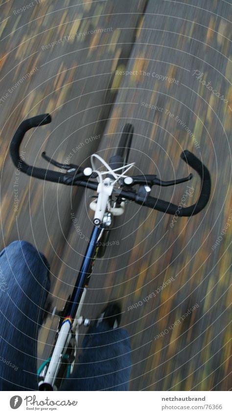 Guck mal Mami – ohne Hände... Blatt Herbst Bewegung Regen Schuhe Fahrrad Wind Geschwindigkeit Sicherheit Jeanshose gefährlich fahren Unfall selbstbewußt