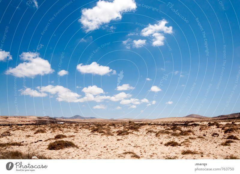 Überblick Ausflug Abenteuer Ferne Natur Landschaft Pflanze Urelemente Erde Sand Himmel Wolken Sommer Schönes Wetter Sträucher Hügel Erholung heiß schön trocken
