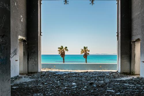 Paradise Lost Himmel Meer Wand Mauer Gebäude Horizont Schönes Wetter Aussicht Wut Gewalt Palme Ruine Aggression Zerstörung Politik & Staat Hass